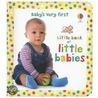 Little Book Of Little Babies door Keith Furnival
